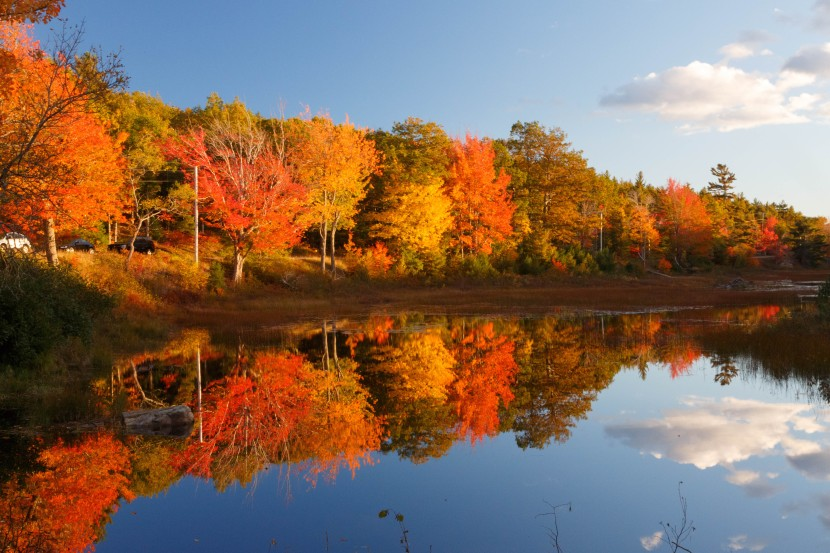The 6 Best Fall PortCities