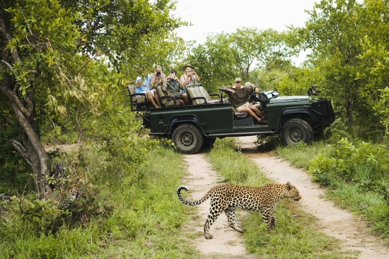 South-Africa-Kruger-National-Park-Safari.jpg