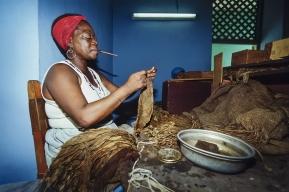 Cuba-Pinar del Rio-Cigar Factory