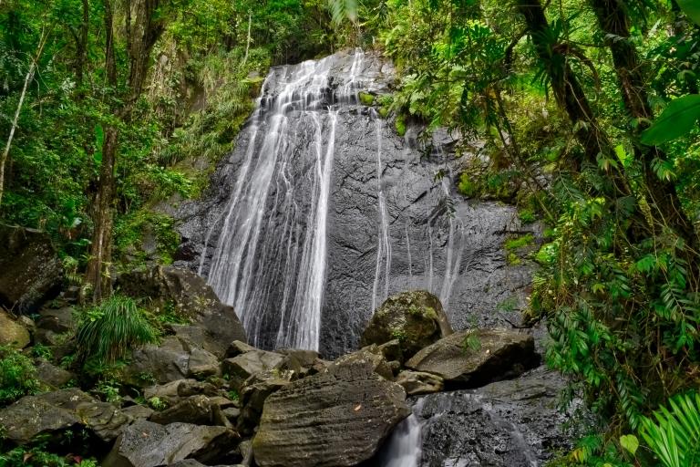 La_Coca_Waterfall_El_Yunque_Puerto_Rico.jpg