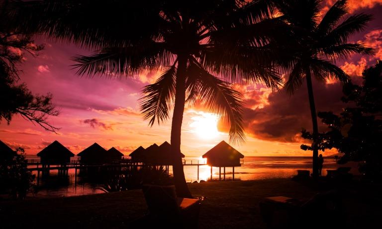 french-polynesia-tahiti-beach-silhouette-night-palms-tropical.jpg
