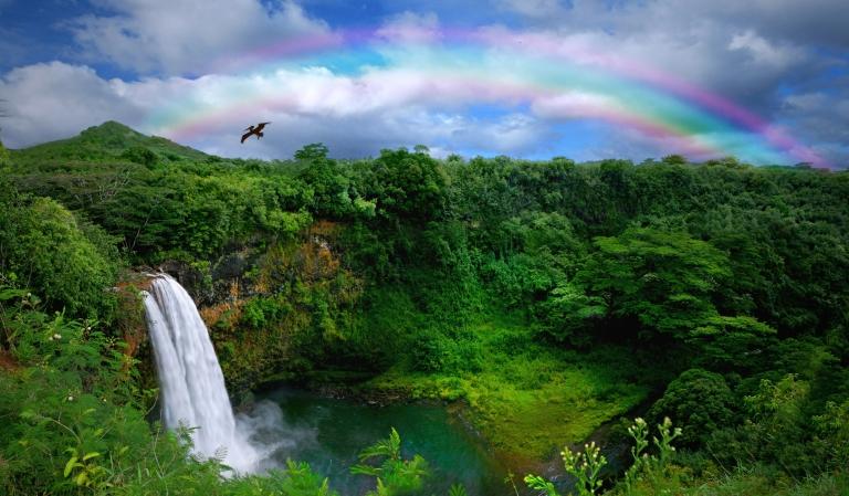 Hawaii_Kauai-waterfall.jpg
