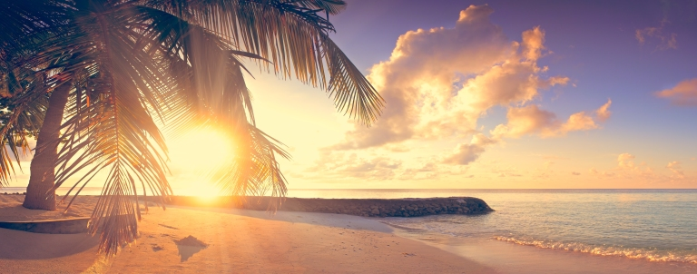 Tropical beach-palm trees-sunset-vintage.jpg