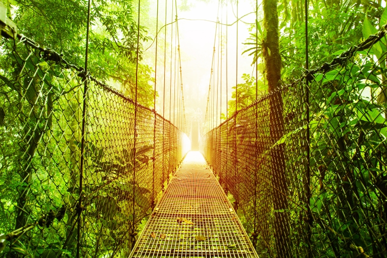 costa_rica_arenal_hike_bridge.jpg