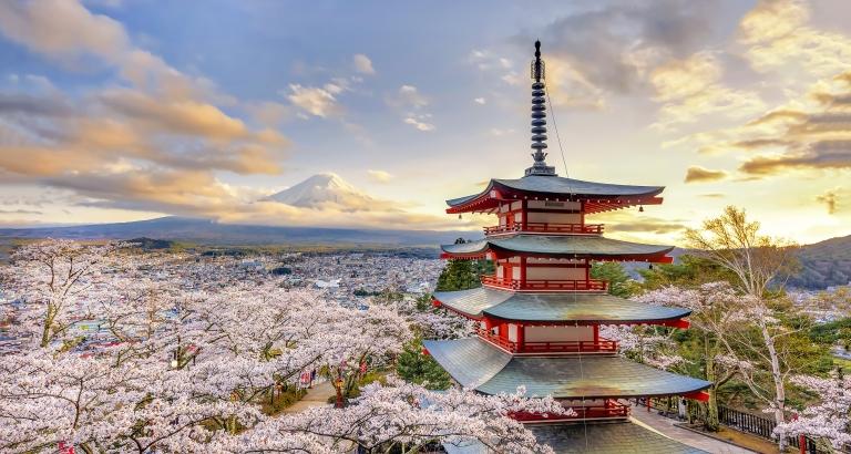Tokyo-Temple-Mt Fuji-Sakura Blossoms.jpg