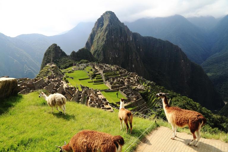 Peru-Machu-Picchu-with-llamas.jpg