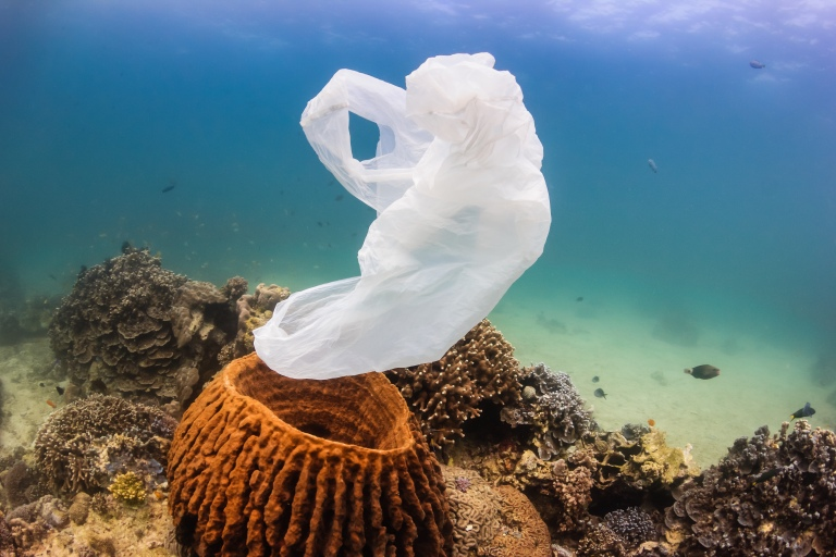 ocean-conservation-recycle-coral